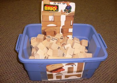 CCR000325 Brio Blocks