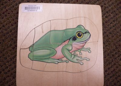CCR000515 Frog cycle puzzle