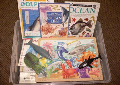 CCR001086 Ocean Kit