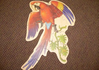 CCR001234 Macaw Puzzle