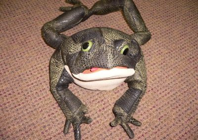 CCR001246 Toad Puppet