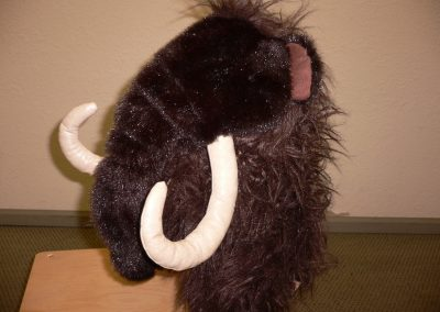 CCR001247 Woolly Mammoth