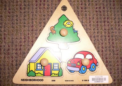 CCR001337 Nieghborhood Puzzle