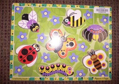CCR001372 Insect Puzzle
