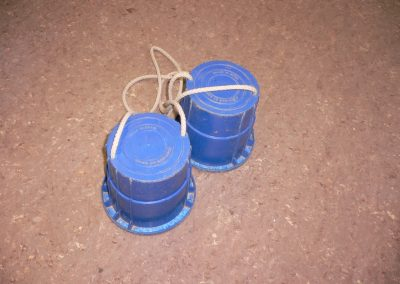 CCR001574 Blue Stilts