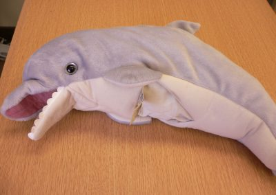 CCR001628 Dolphin Puppet