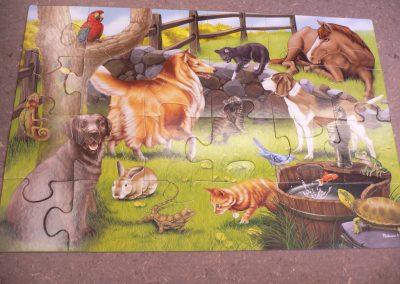 CCR001634 Pets Floor Puzz
