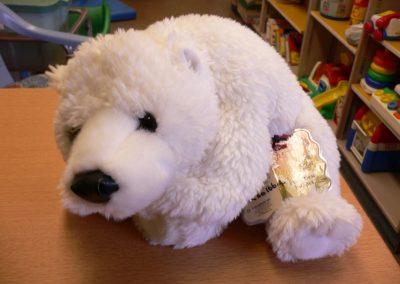 CCR001664 Pola Bear Pupp