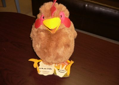 CCR001666 Red Hen Puppet