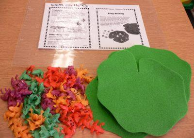 CCR001673 Frog Sorting Kit