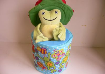 CCR001795 Frog-in-a-box