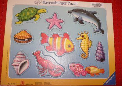 CCR001949 Ocean Creature Puzzle