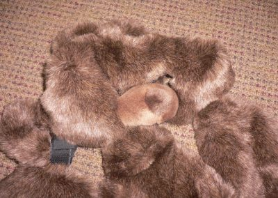 CCR001962 Bear Dress Up