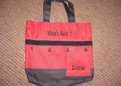 SCA003671 What's Next Bag