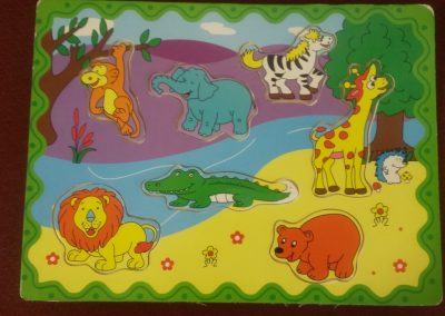 CCR002289 Jungle puzzle