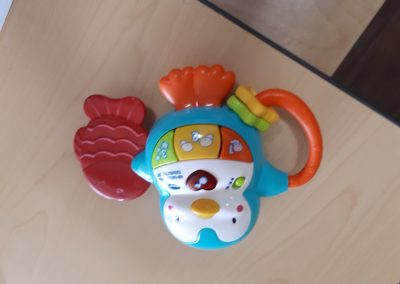 CCR002633 Interactive Rattle